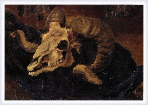 Cranio d'ariete